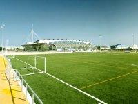 专业足球场
