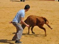 Recortando al animal