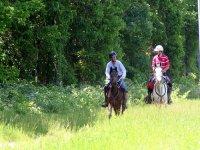 Rutas a caballo en Alicante