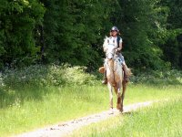 Cabalga a lomos de un caballo