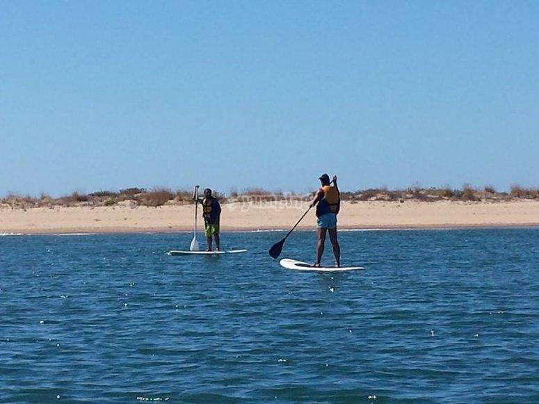 dos chicos haciendo paddle surf