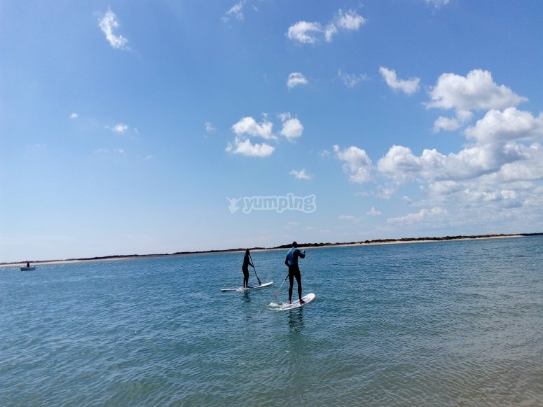 chicos paddle sur en el mar