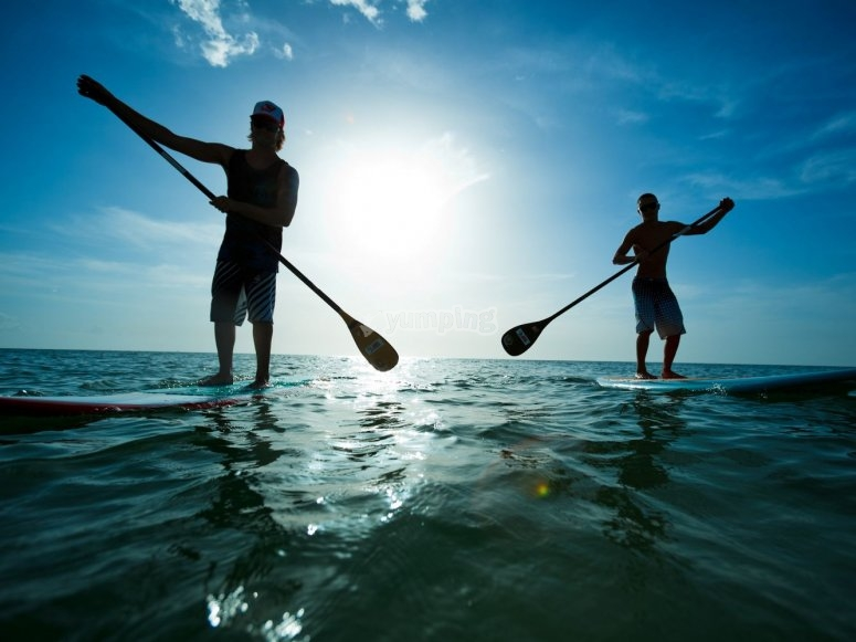 Stand up paddle surf teammates in Catalonia