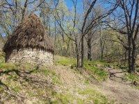 Experiencia de cabrero en la sierra de Gredos