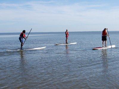 Percorso di paddle surf di 2 ore attraverso la Baia delle Rose