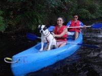 Perro al frente de la canoa