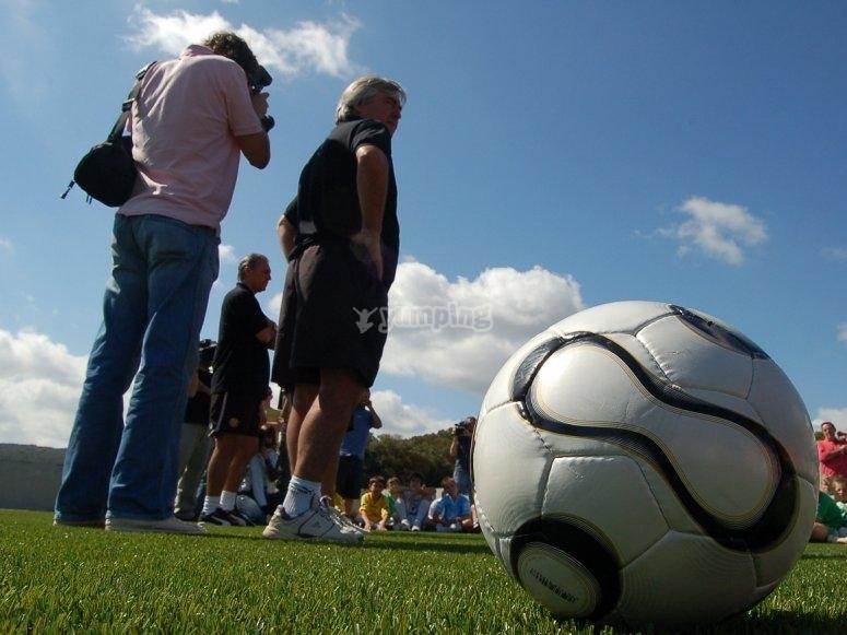 球在草的脚下。