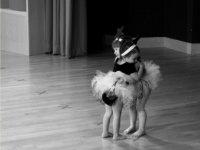 Amistades eternas con la danza