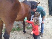 Actividades con caballos para ninos