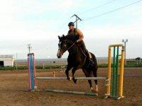 Clases de equitación en Badalona