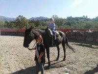 Actividades a caballo para niños