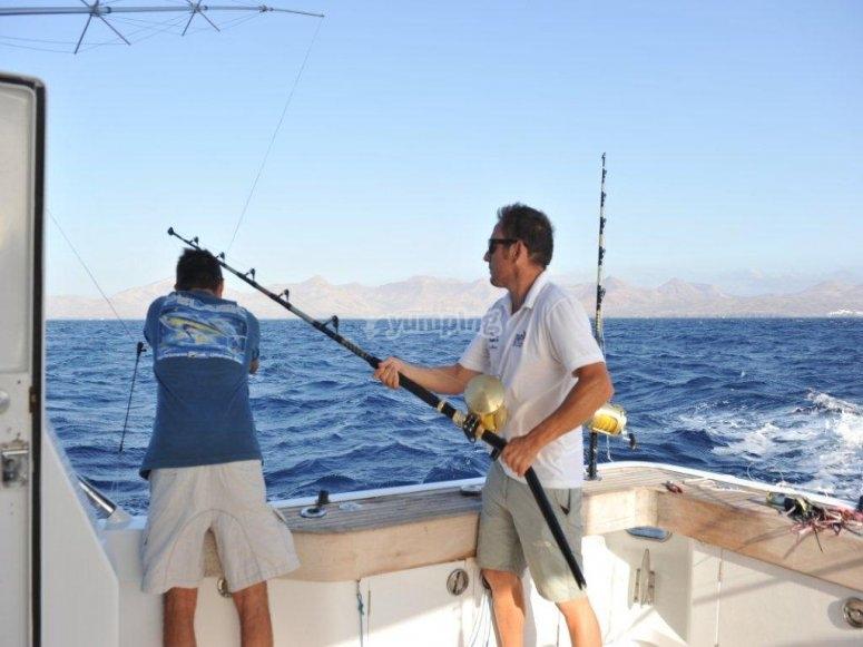 红金枪鱼捕捞蓝鳍金枪鱼在德尼亚阿利坎特