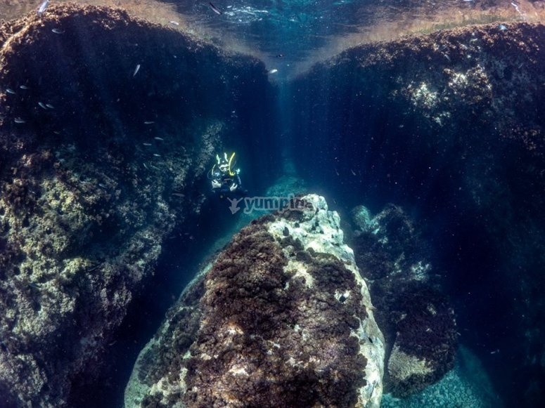 Deep in the waters of Cabo de Gata