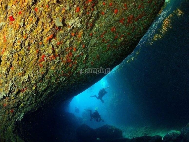 Scuba-diving immersion
