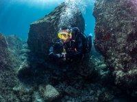Marine flora and fauna in Cabo de Gata