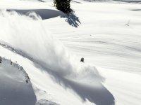 在雪地上全速滑雪