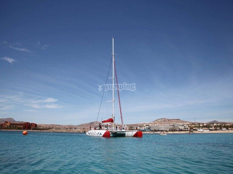 catamaran fondeo