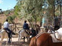 Montar a caballo en Campos de Montiel 1 hora