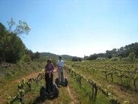 葡萄酒之旅