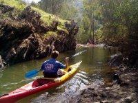 En la canoa bajo los arboles