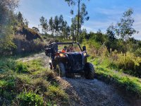 Along the muddy roads with the buggies