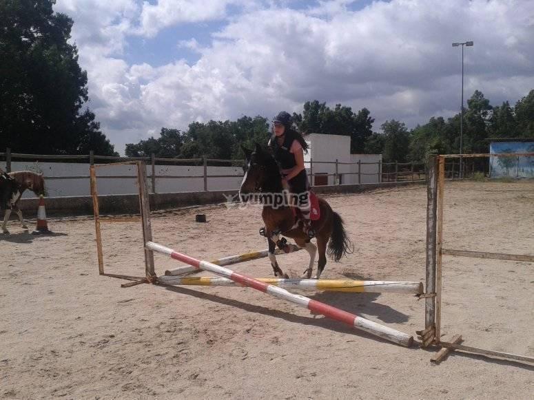 Salto con ponis