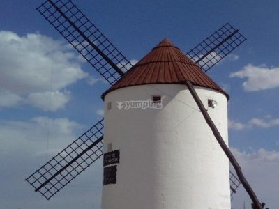 Guided tour along La Mancha Castles and Quijote