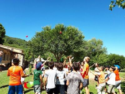 Campamento de verano en Sierra de Gata 12 días