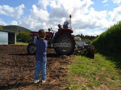 Summer camp in a farm school of Asturias, 10 days