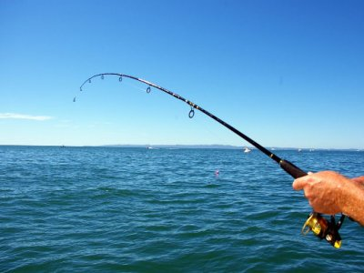 Boat Rentals Pesca