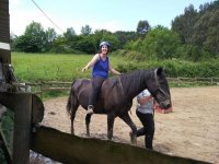 Following the equestrian therapy