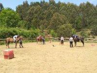 Terapias con perros y equinos en Guipuzcoa
