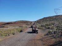 Godendo della fauna selvatica tipico dell'isola nei passeggini