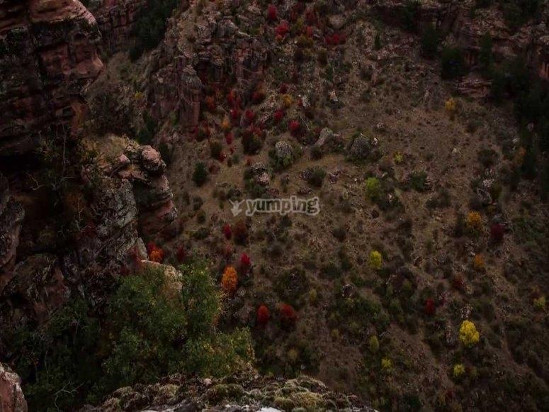 Barrancos y naturaleza