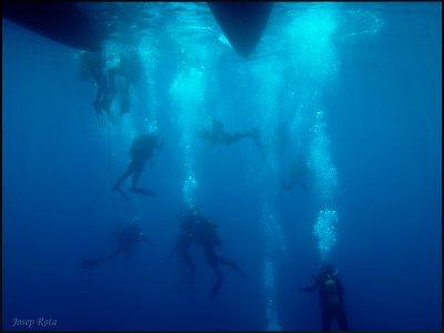 开放水域潜水员 Torredembarra 潜水课程