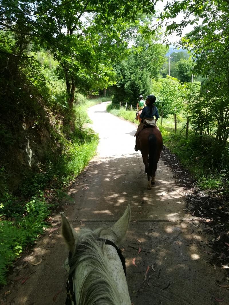 res_o-36540-rutas-a-caballo_de_maitane-fernandez-olivares_14963064595451.jpg