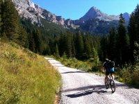 Con bicicleta por el camino
