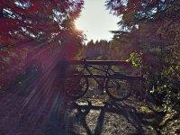 自行车趣味