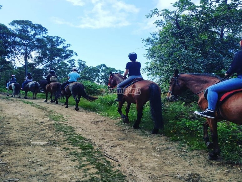 During the horseback route