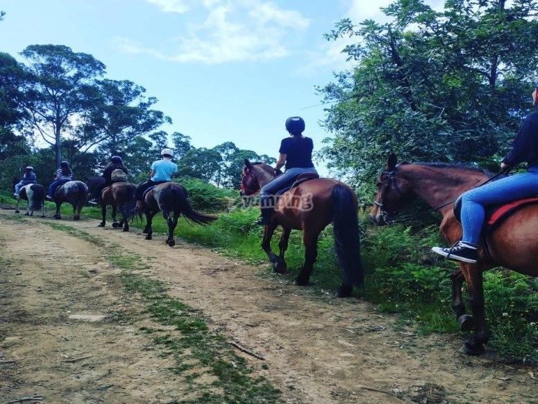 Durante la ruta con los caballos