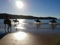 在Alto de Andraka骑马营地1周