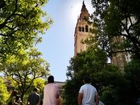 Descubriendo Sevilla monumental
