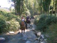 Caballos por el río