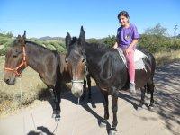A lomos de la mula
