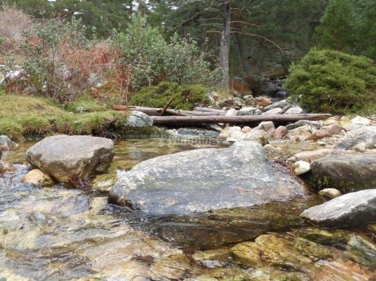 Stream on stones