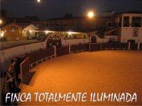 Plaza iluminada por la noche