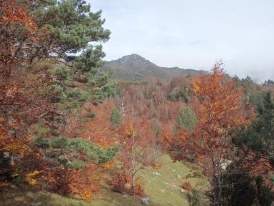 Senderismo por el Pirineo navarro desde Madrid