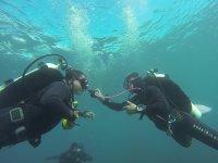 Bautizo de buceo en Tenerife de 45 minutos