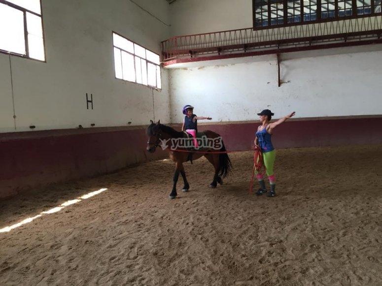 Pista de equitacion indoor