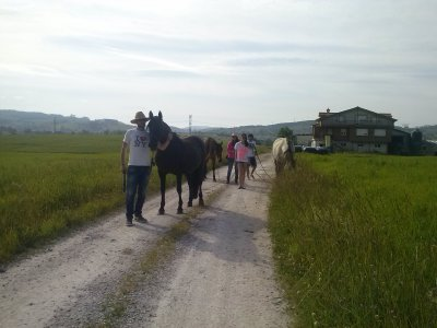 Horse riding in the Cabárceno Natural Park, 8 h